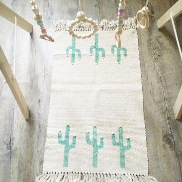 Cactus en folie