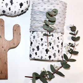 Couverture cactus